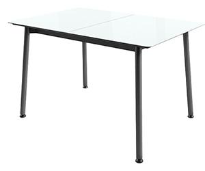 HomeMe Стол обеденный раздвижной стеклянный Дрейк - 120/152 (белый/черный)