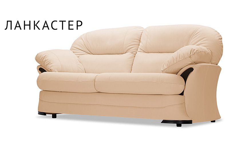 Кожаный диван AAA0054012